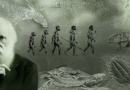 """Evoluzione: L' """"errore"""" di Darwin sull'albero della vita"""